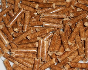 红松生物质颗粒